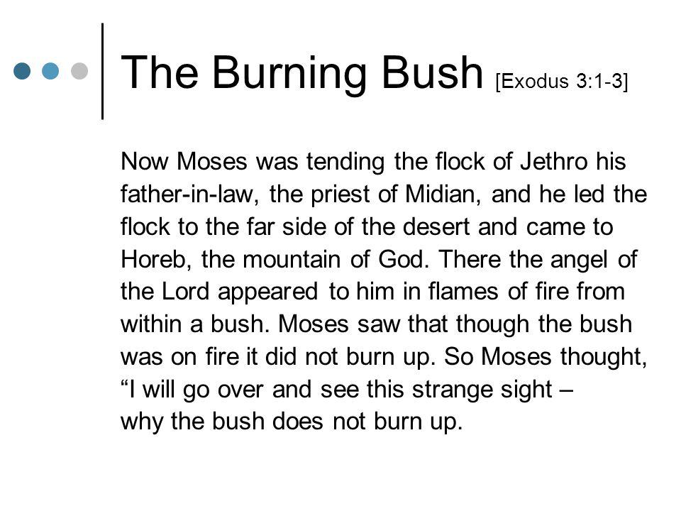 The Burning Bush [Exodus 3:1-3]